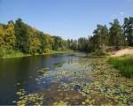Красота всей природы